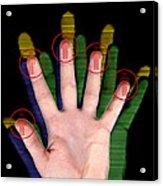 Fingerprint Biometrics Acrylic Print