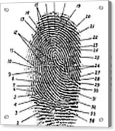 Fingerprint Diagram, 1940 Acrylic Print