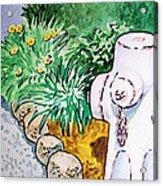 Fire Hydrant Sketchbook Project Down My Street Acrylic Print by Irina Sztukowski