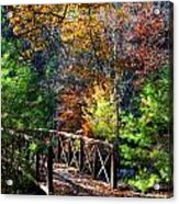 Fire's Creek Bridge Acrylic Print