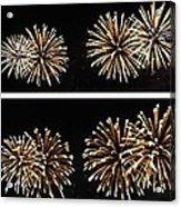 Firework Lifecycle 1 Acrylic Print