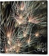 Fireworks On Bastille Day Acrylic Print by Sami Sarkis