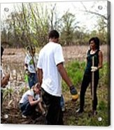First Lady Michelle Obama Helps Plant Acrylic Print by Everett