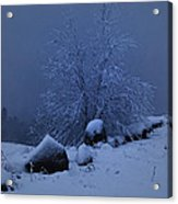 First Snow At First Light Acrylic Print