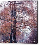 First Snow. Winter Coming Acrylic Print