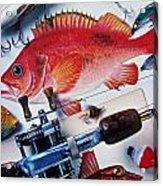Fish Bookplates And Tackle Acrylic Print