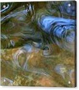 Fish In Rippling Water Acrylic Print