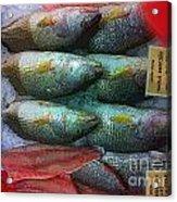 Fish Market Acrylic Print