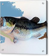 Fish Mount Set 07 C Acrylic Print
