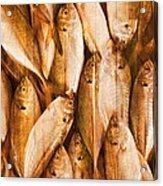 Fish Pattern On Wood Acrylic Print by Setsiri Silapasuwanchai