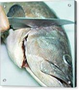 Fish Preparation Acrylic Print