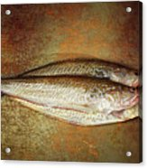 Fishes Acrylic Print