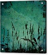 Five Crows Acrylic Print