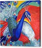 Flamboyant Peacock Acrylic Print