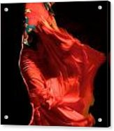 Flamenco Acrylic Print by Tim Kahane