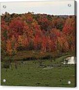Flaming Foliage Autumn Pasture Acrylic Print