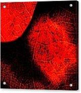 Flaming Foliage Acrylic Print