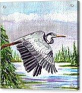 Flight Of Fantasy Acrylic Print