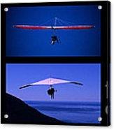 Flight Of Fantasy No Caption Acrylic Print