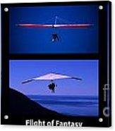 Flight Of Fantasy With Caption Acrylic Print