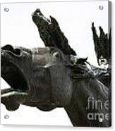 Flight Of The Valkyrie Acrylic Print