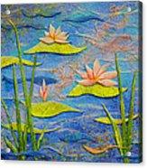 Floating Lilies Acrylic Print