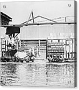 Flooding On The Mississippi River, 1909 Acrylic Print by Library of Congress