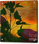 Floral Contrast Acrylic Print