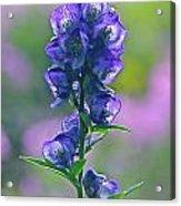 Floral Crystal Acrylic Print