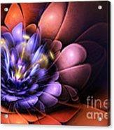 Floral Flame Acrylic Print