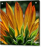 Floral Flaming Fingers Acrylic Print