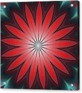 Floral Geometric 102311a Acrylic Print