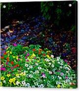 Floral Path Acrylic Print
