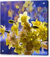 Floral Reflections Acrylic Print