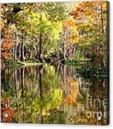Florida Autumn Secret Acrylic Print