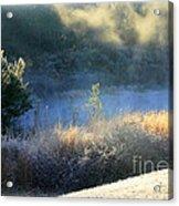 Florida Frosty Morning Acrylic Print
