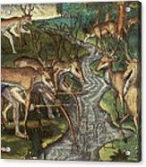 Florida: Hunters, C1591 Acrylic Print