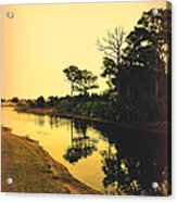 Florida Landscape II Acrylic Print