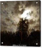 Florida Night Shadows  Acrylic Print