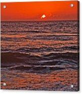 Florida Sunrise Acrylic Print