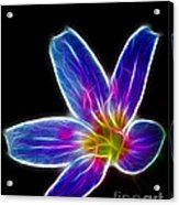 Flower - Electric Blue - Abstract Acrylic Print