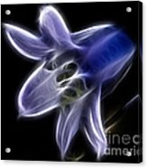 Flower - Ghostly Blue - Abstract Acrylic Print