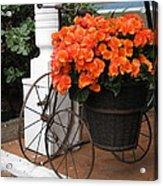 Flower Bike Acrylic Print