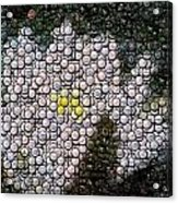 Flower Bottle Cap Mosaic Acrylic Print by Paul Van Scott