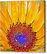 Flower Child - Flower Power Acrylic Print