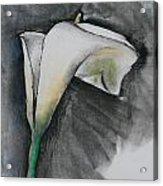 Flower In Bloom - Los Angeles Acrylic Print
