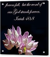 Flower Macro And Isaiah 40 8 Acrylic Print