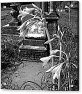 Flower Old Grave Acrylic Print