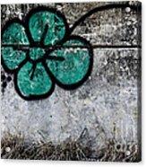 Flower On The Rocks Acrylic Print