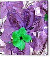Flower1 Acrylic Print